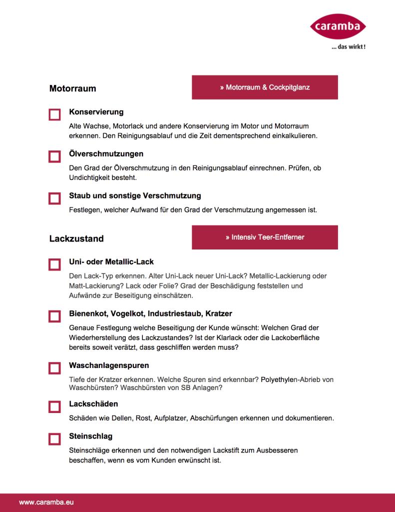 autoaufbereitung-diagnose-checkliste